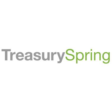 Kevin Cook, Co-Founder and CEO at TreasurySpring