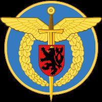Colonel Rudolf Straka