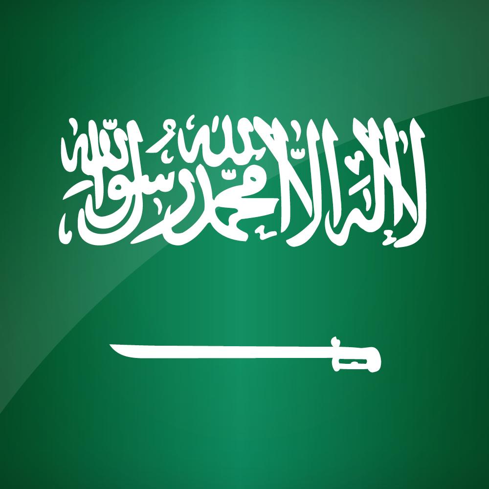 Colonel Ali Al Kinani