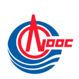 Qiao Yu, GM of LNG Bunker Project at CNOOC Gas and Power Group.