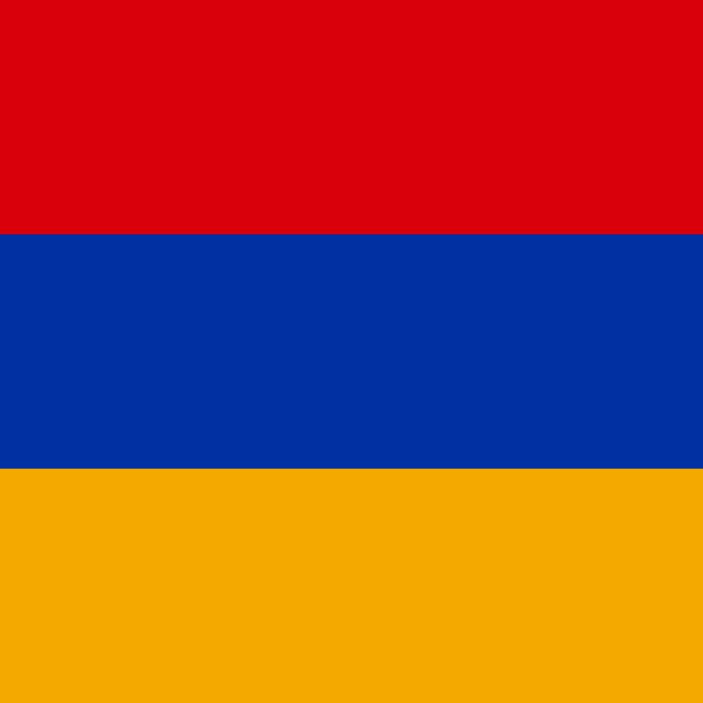 Colonel Manvel Vardanyan
