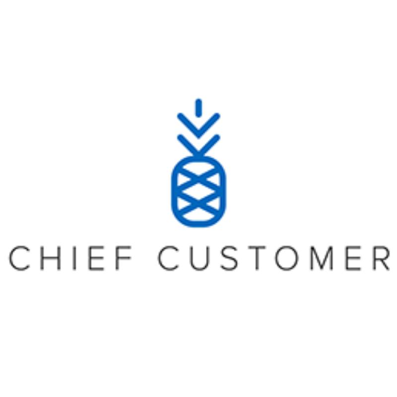 Ingrid Lindberg, CEO & Founder at Chief Customer