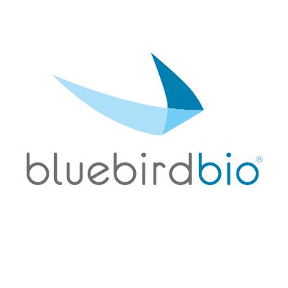 Cynthia Provencher, Senior Manager, Supplier Relationship Strategy at BlueBird Bio