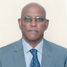 Taddesse Woldeyohannes Woldu, Director General Industrial Development at Ministry of Trade & Industry, Eritrea