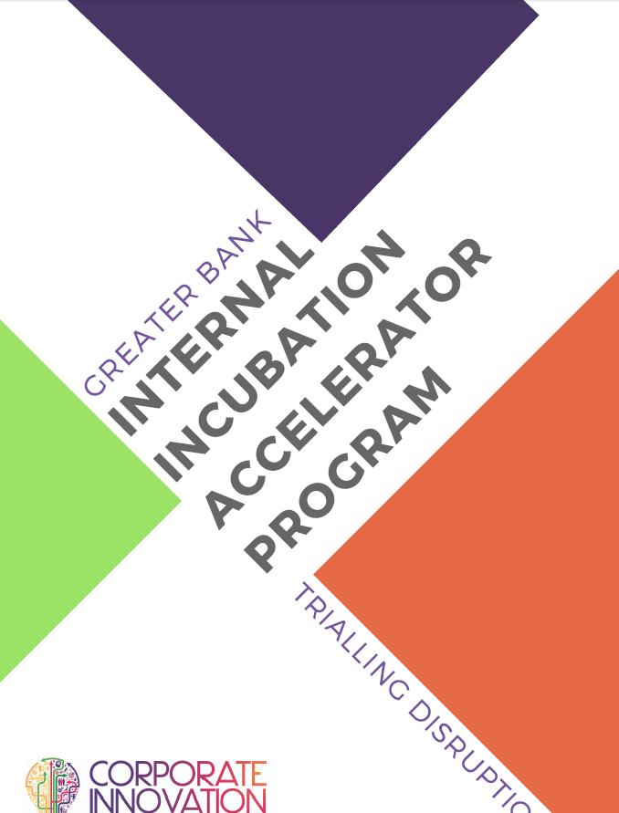 Internal Incubation Accelerator Programme: Trialling Disruption