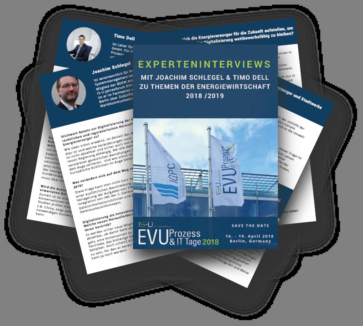 Experteninterviews mit dem Fachbeirat Teil II