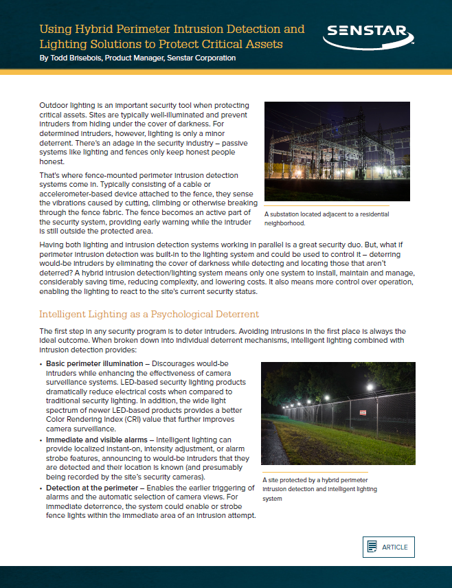 Hybrid Security-Lighting Systems for Critical Infrastructure Protection
