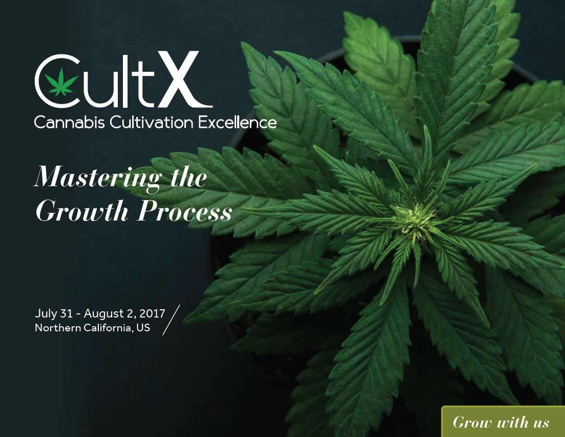 What to Expect at CultX