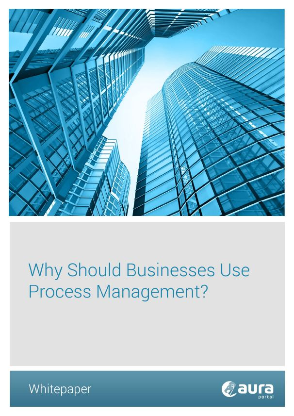 Why should Businesses Use Process Management