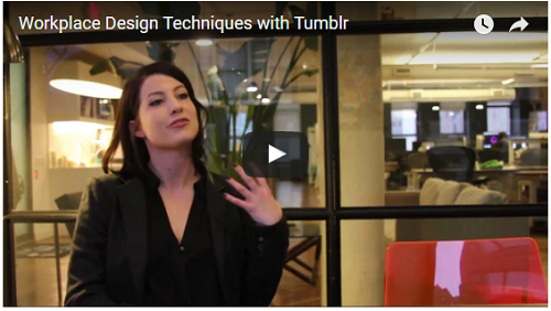 Workplace Design Techniques Video Interview with Tumblr