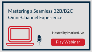 Mastering a Seamless B2B/B2C Omni-Channel Experience