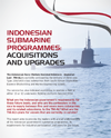 Coastal Indonesia Submarine