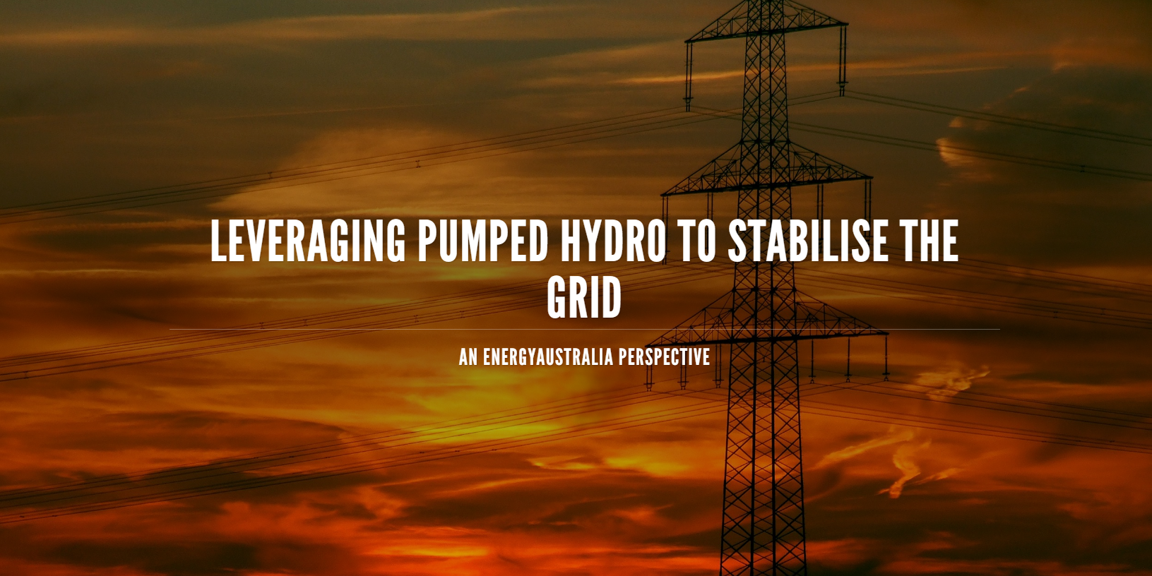 Leveraging Pumped Hydro to Stabilise the Grid: An EnergyAustralia Perspective