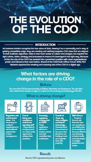 The evolving role of a CDO