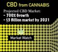Cannabis CBD Extract Market Booming | 700% Growth Projected