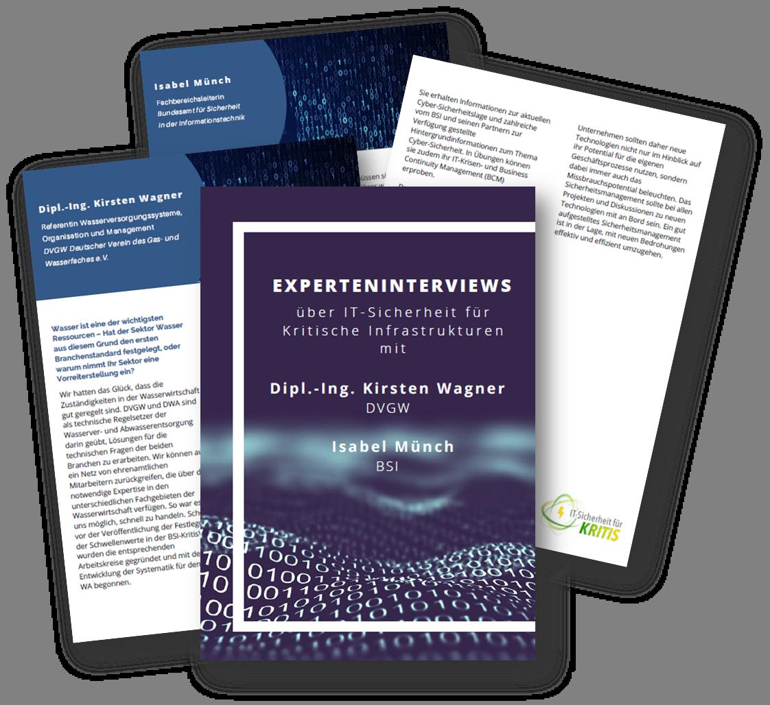 Experteninterviews mit Vertretern von DVGW und BSI