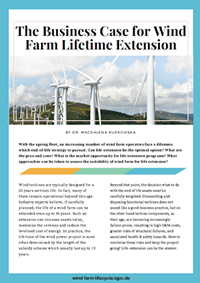 The Business Case for Wind Farm Lifetime Extension
