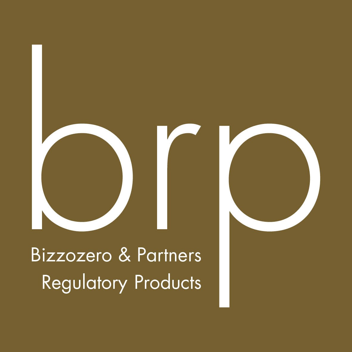 BRP (Asia) Private Limited
