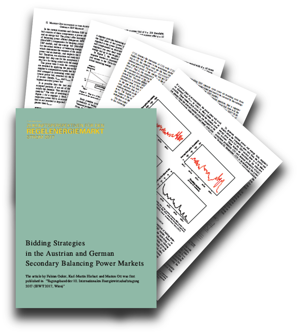 Whitepaper zu Gebotsstrategien im Sekundärregelmarkt
