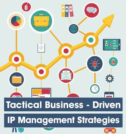 Tactical Business – Driven IP Management Strategies: Exclusive Interviews