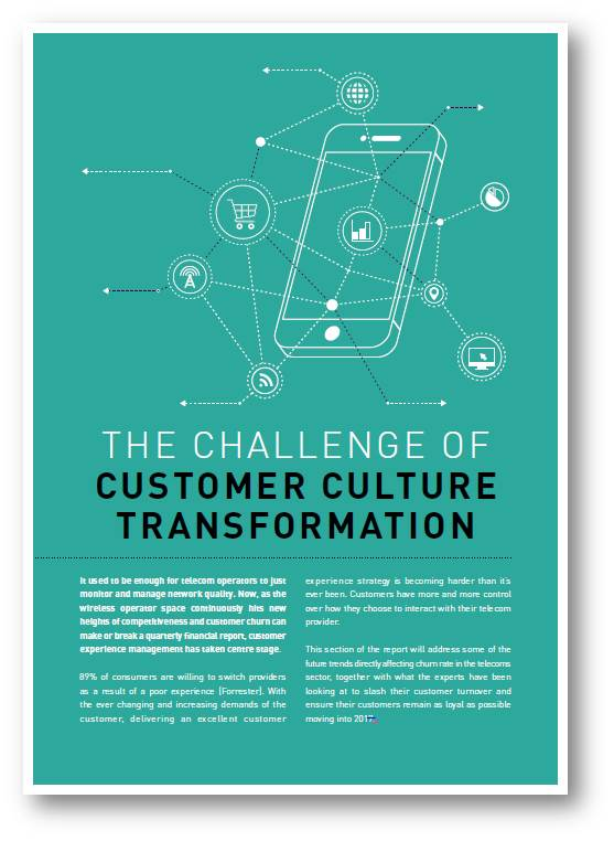 The Challenge of Customer Culture Transformation