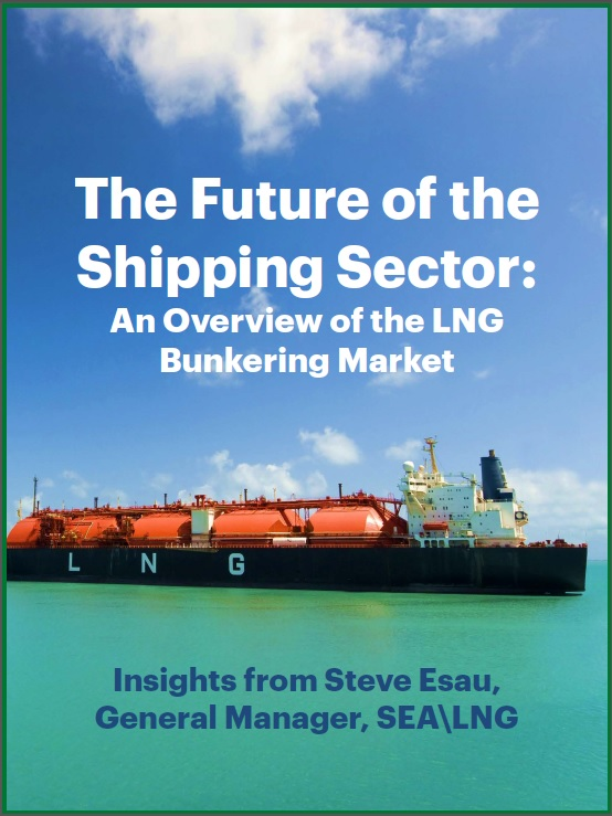 The Future of the Shipping Sector: An Overview of the LNG Bunkering Market