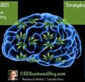 Cannabidiol: Good for You and Your Brain? Updated Post