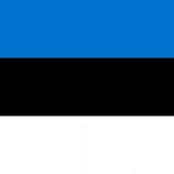 Lieutenant Colonel Arbo Probal, Commander, Artillery Battalion, 1st Infantry Brigade at Estonian Defence Forces