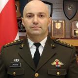 Colonel Nikoloz Janjgava