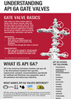 Understanding API 6A Gate Valves - Infographic Guide