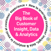 The Big Book of Customer Insight, Data & Analytics