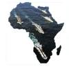 african-naval-market