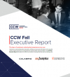 CCW Fall Report