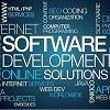 Survey: Automotive Software Development