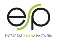 Enterprise System Partners