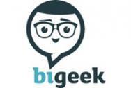 BI Geek
