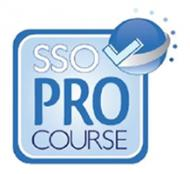 Invest in Yourself: SSO Pro Online Training Program Overview