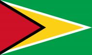 Guyana Police Force