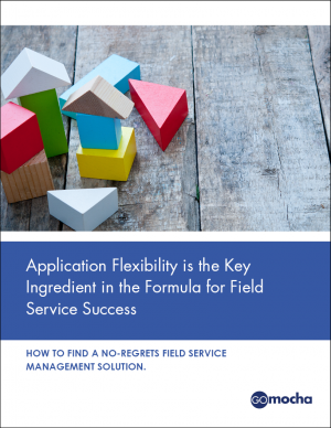 Application Flexibility is the Key Ingredient in the Formula for Field Service Success