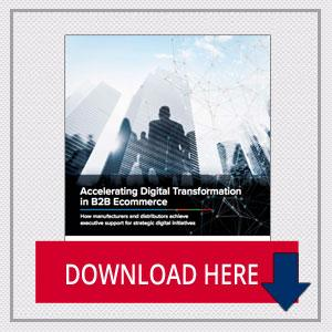 White Paper: Accelerating Digital Transformation in B2B Ecommerce