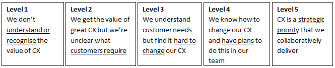 How do I get my customer experience where it needs to be?