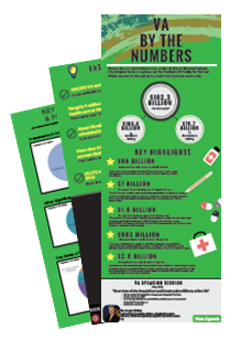 VA by the numbers thumb