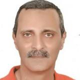 Sherif Fasseeh