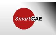 Smart CAE