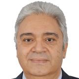 Professor Medhat Amer