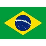 Brazilian Army