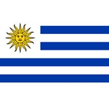 Uruguayan Air Force