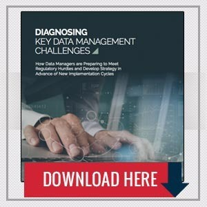 Diagnosing Key Data Management Challenges