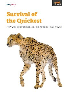 Survival of the Quickest | How web optimization is driving business growth