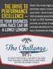 INFOGRAPHIC: The Drive to Performance Excellence - what does it really look like?